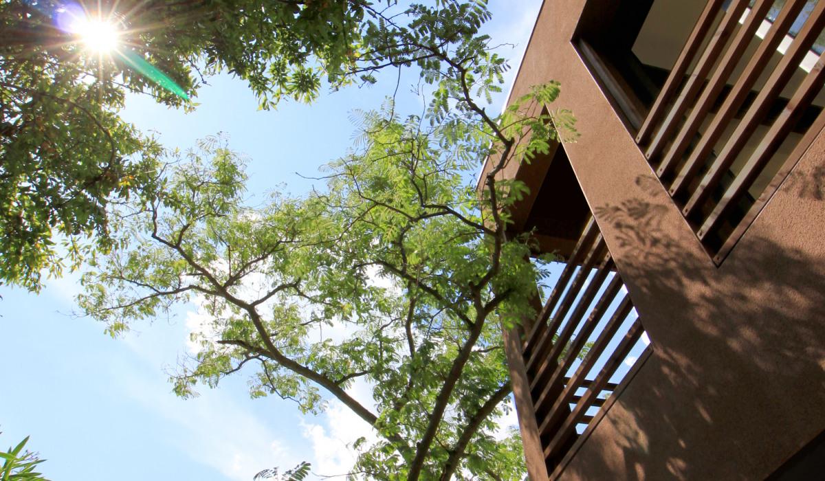 Archidvisor_Laboratoire Architectures et Paysage_Salle de Yoga_2.jpg
