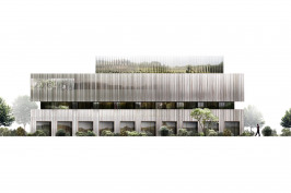 Loft et logements collectifs