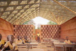 Canopee tree school