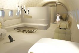 Transformation d'un Airbus A320 en logement