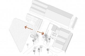BER - Schéma 5 - Rapport Vignes Cour Vendanges-01.jpg