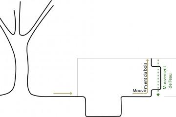 FGAUDIN-NEMO-BASSIN-PISCINE-BRETAGNE-MOUVEMENTS.jpg