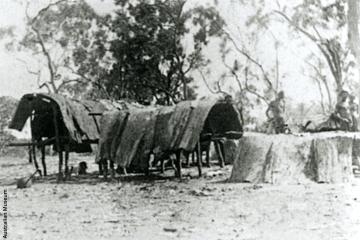 Un potentiel Aborigène