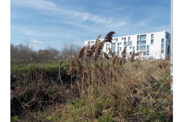 Terrain à construire à Bordeaux