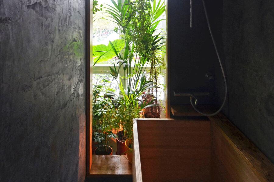 Projet Un coin de verdure réalisé par un architecte Archidvisor